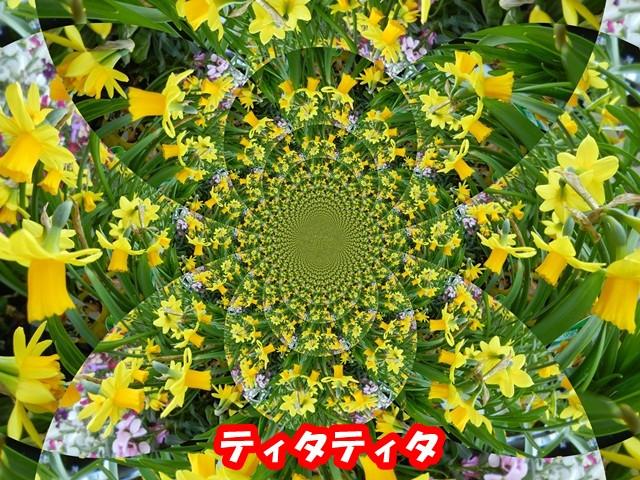 Dscn04118520130213_2
