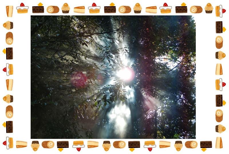 Sweets_frame_yoko3_cale